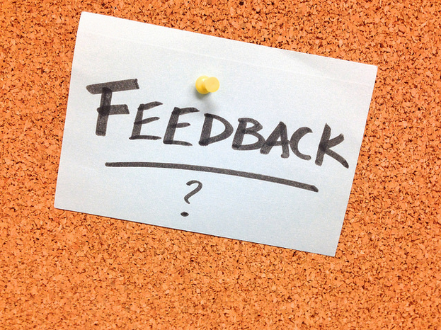 How Project Managers Need to Balance Positive and Negative Feedback